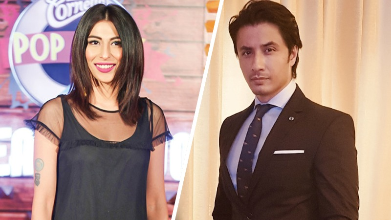 Meesha's Plea for Change of Court Judge in Ali Zafar Defamation Case Accepted